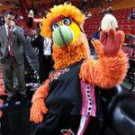 Jon Finkel as Miami Heat Mascot Burnice